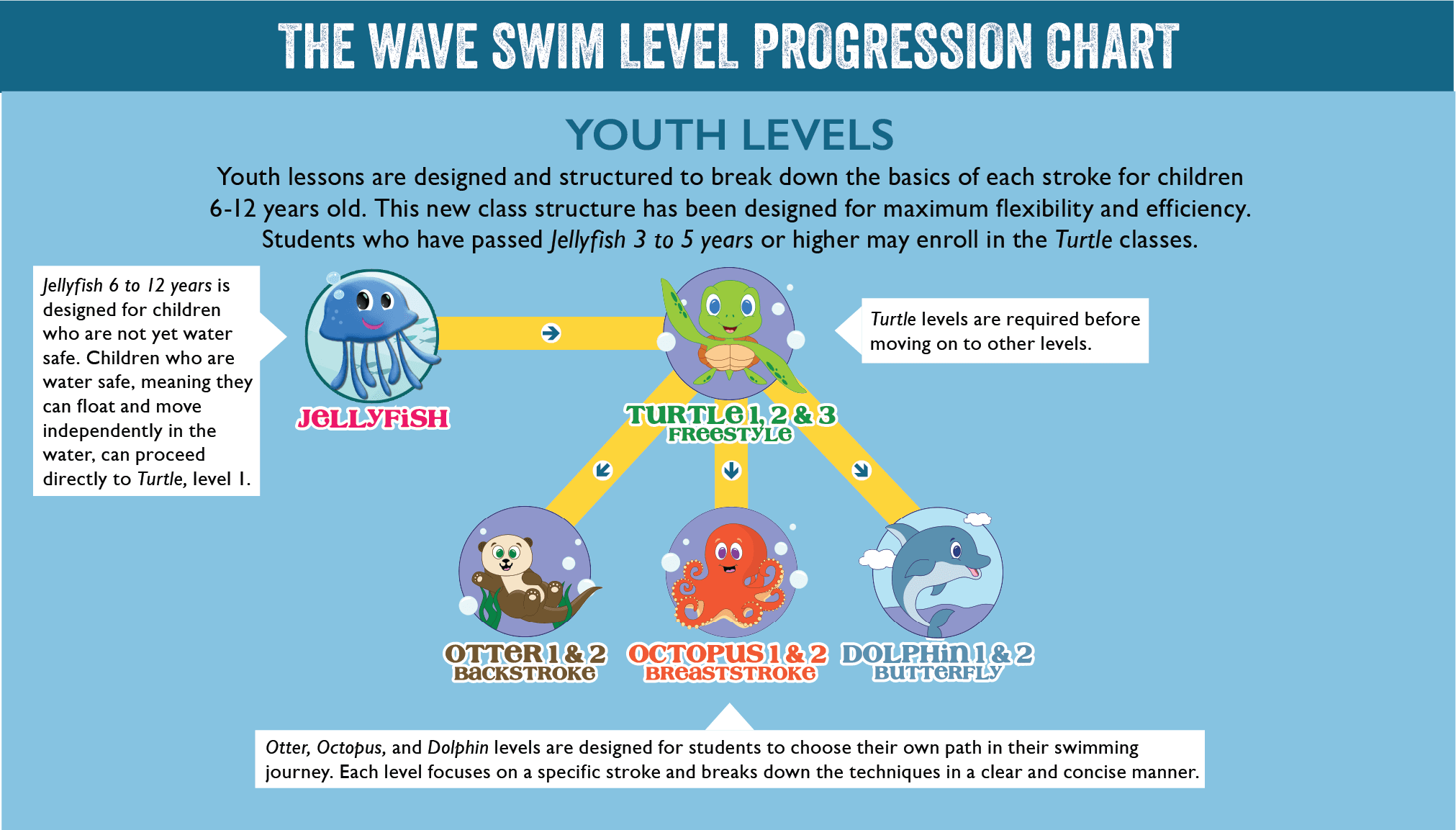 Youth Levels Swim Progression Chart